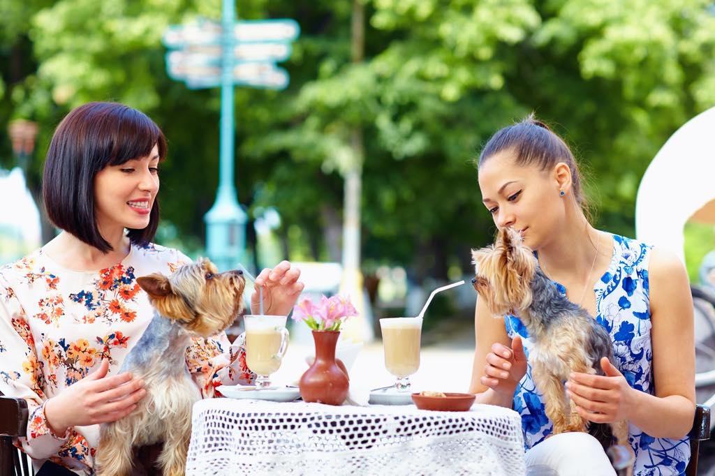 ペット同伴で食事する人々